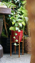 Load image into Gallery viewer, Ascot Plant Stand Rust