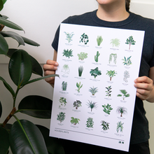 Load image into Gallery viewer, Houseplants Print