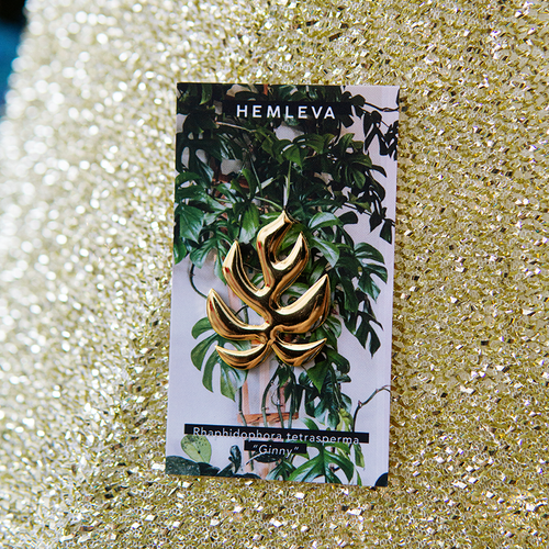 Monstera Ginny Pin