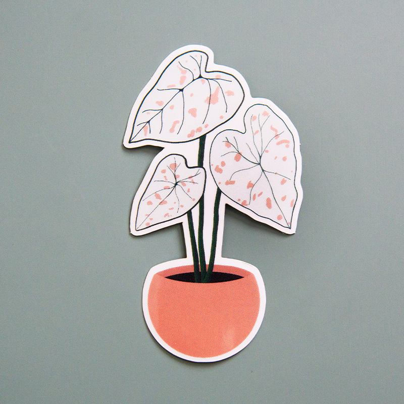 Caladium Sticker