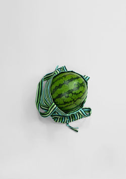 The Watermelon Bag