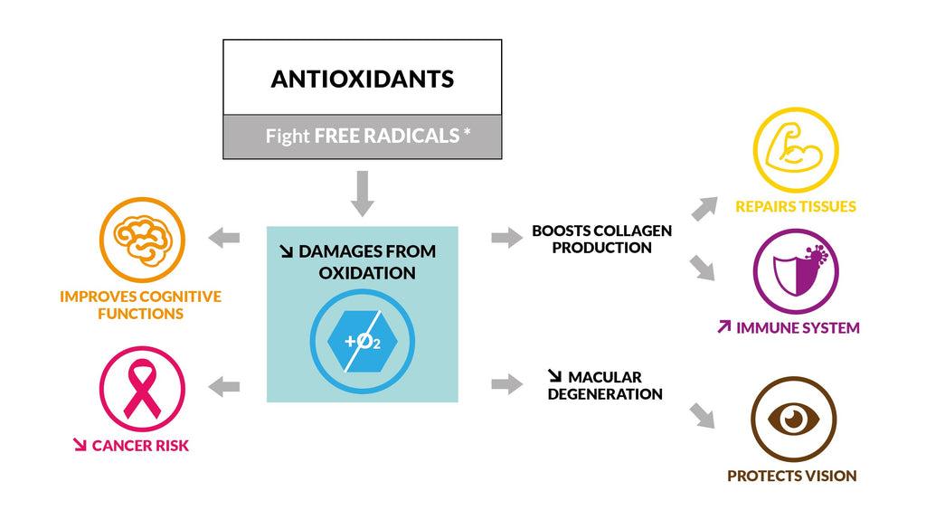 antioxidant proprieties