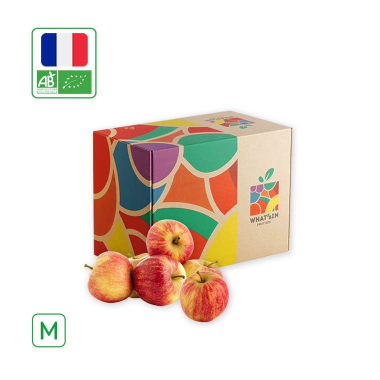 Royal Gala Apple FR Solo (M - 2.5 KG)