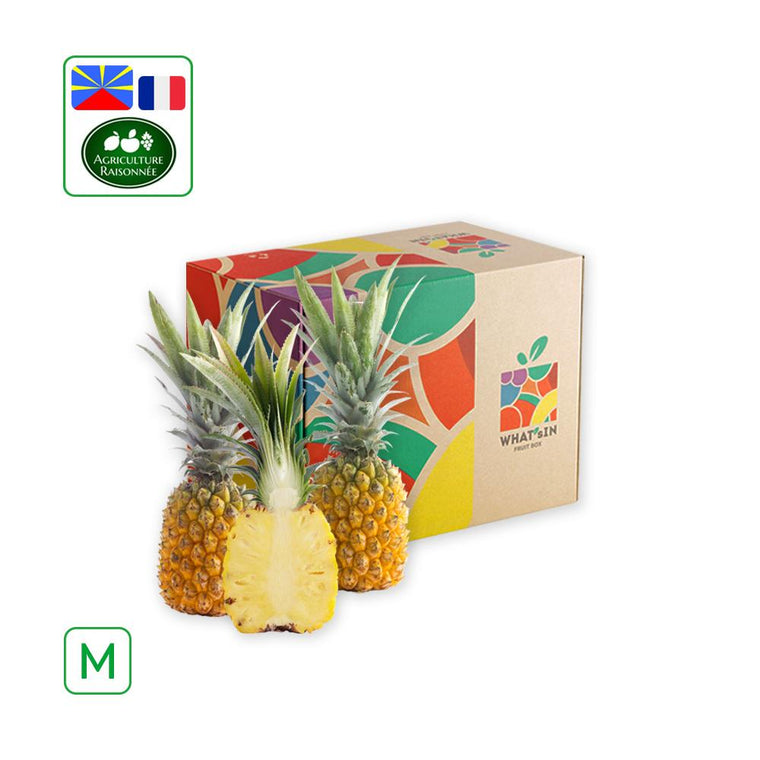 WHAT'sIN Solo M Queen Victoria Pineapple
