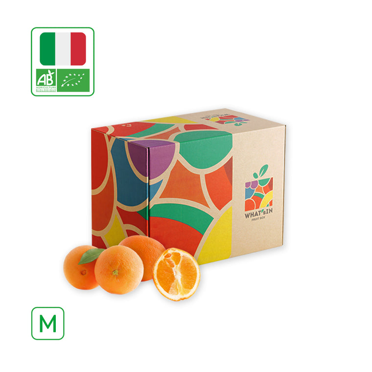 WHAT'sIN Navelina Orange Solo (M - 2.5 KG)