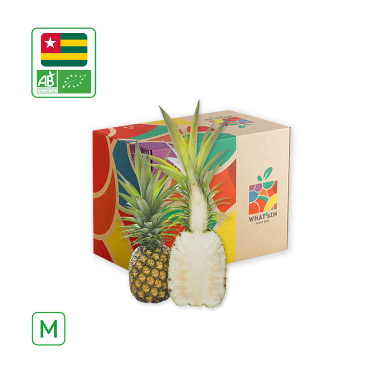 WHAT'sIN Sugar Loaf Pineapple Solo (M - 2.5 KG)