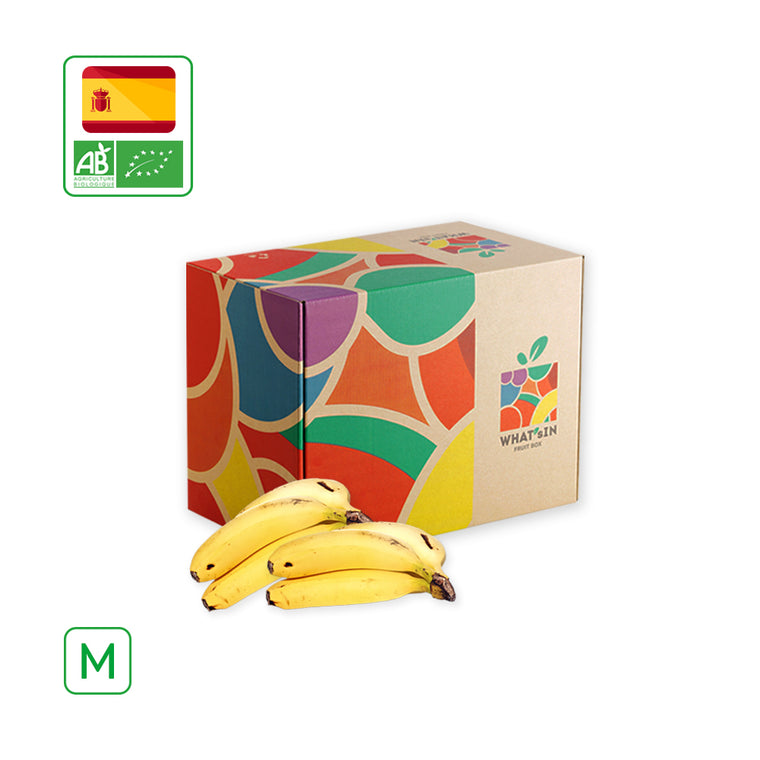 WHAT'sIN Canary Island Banana Solo (M - 2.5 KG)