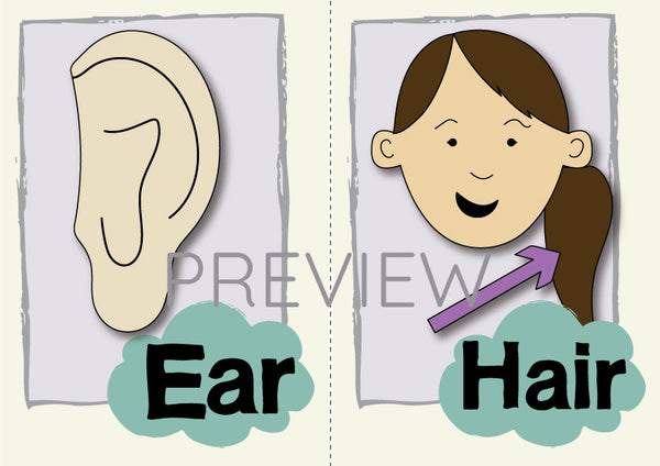 Ear and Hair Flashcard