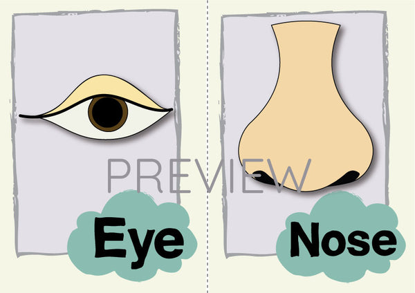 Eye and Nose Flashcard