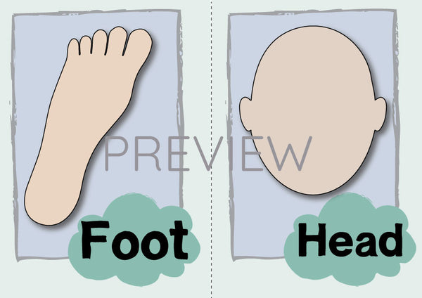 Foot and Head Flashcard