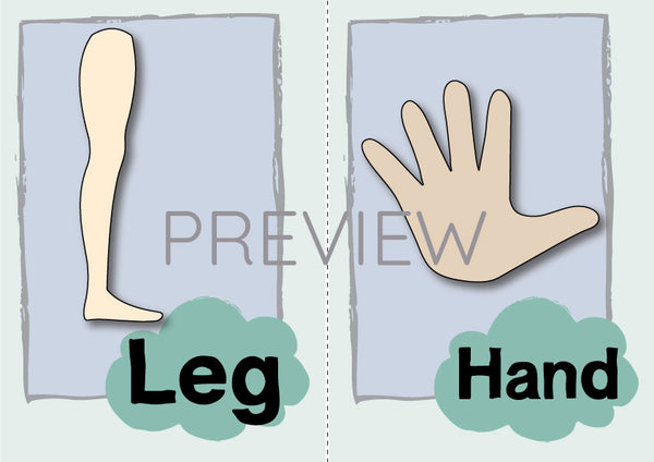 Leg and Hand Flashcard