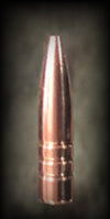 Spartan Premium Hunter .22 Cal 45gr Hollow Point Boat Tail