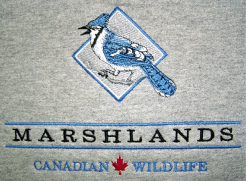 MARSHLANDS WILDLIFE, BLUE JAY