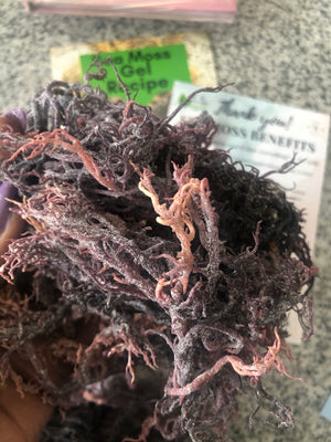 100% Raw Organic Purple Sea Moss - 4 ounces