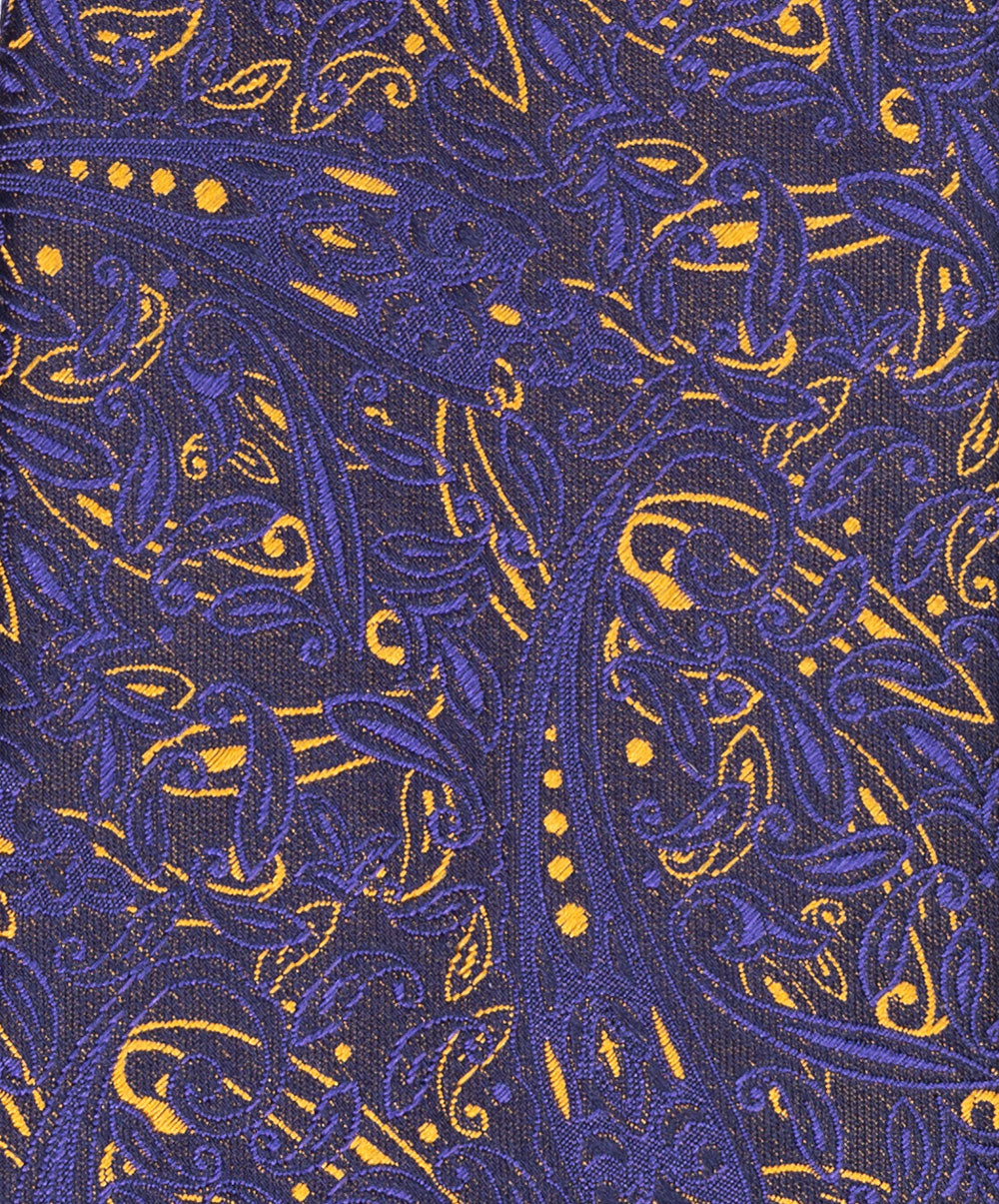 8.0cm Navy/Gold Varied Paisley Tie
