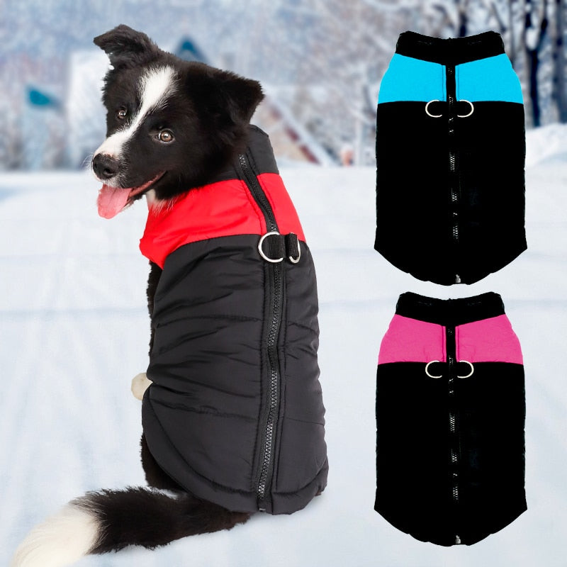 Winter Dog Clothes -