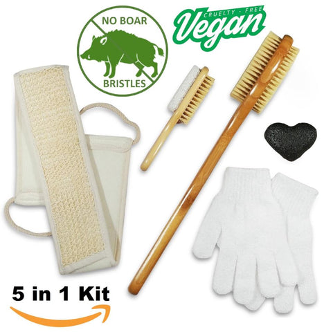 5 in 1 Dry Brush Kit