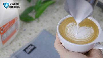 Online Coffee School, Intro to Milk Steaming and Latte Art