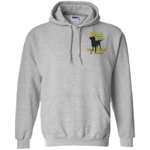 Friends dont G185 Gildan Pullover Hoodie 8 oz.