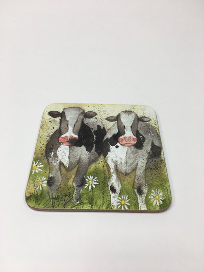 Curious Cow Coaster