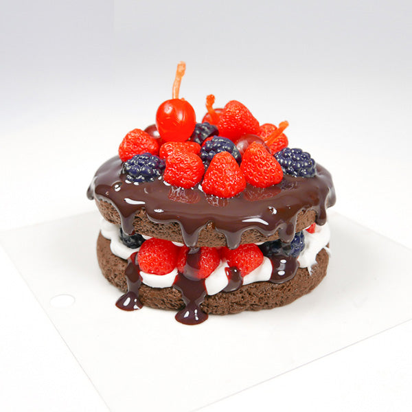 Melting chocolate berry cake tutorial with light air dry clay