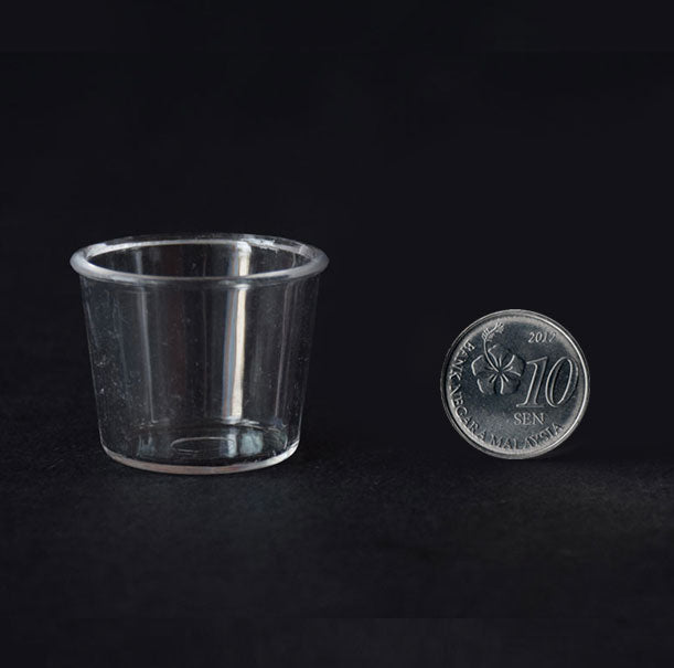 Big Miniature Bowl | Vase