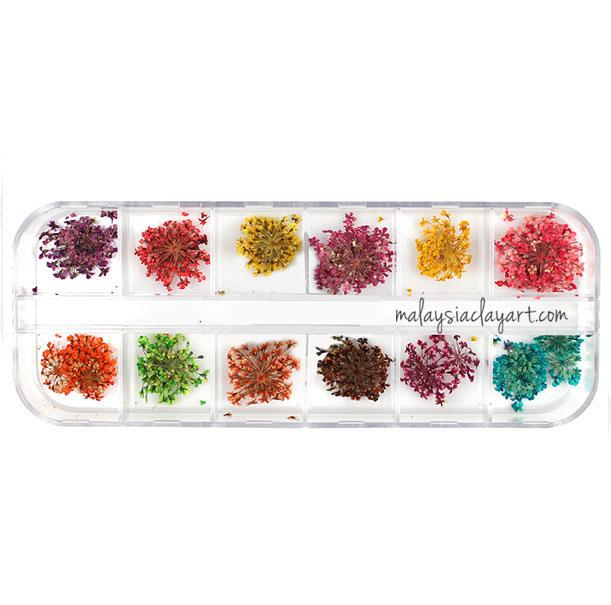 DIY Dried Flower Set - 12 Colors