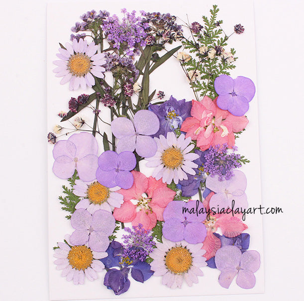 Purple Mixed Pressed Dried Flower