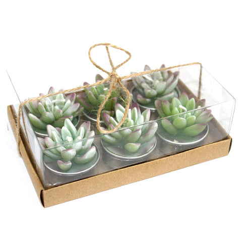Cactus Tealights in Gift Box