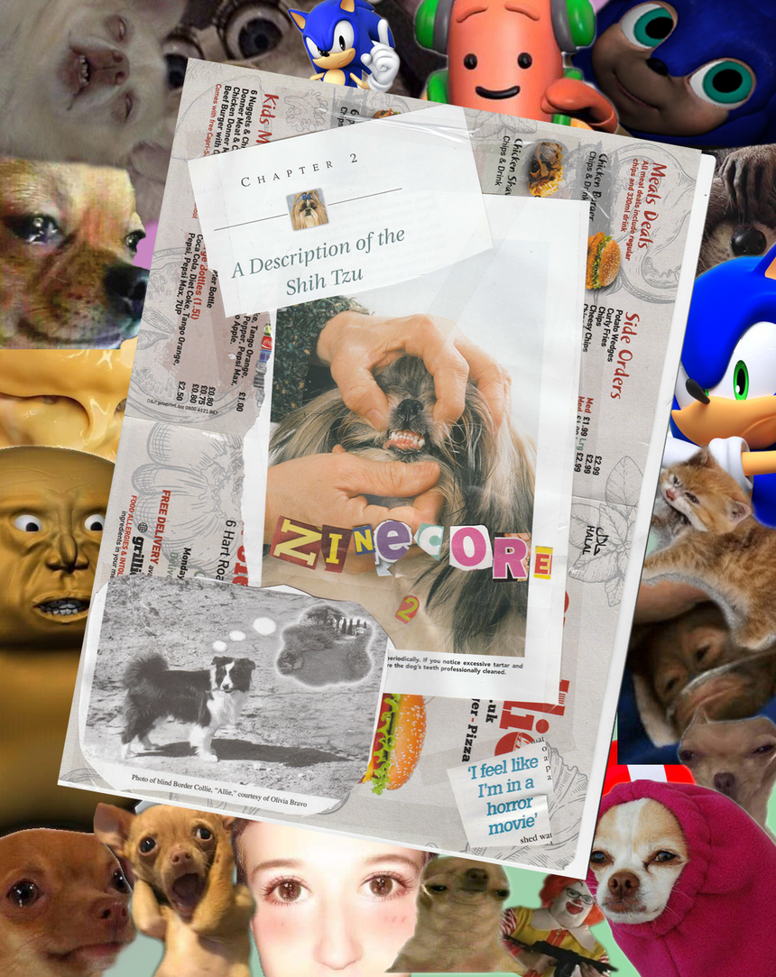 dogecore lore forbidden zine subscription