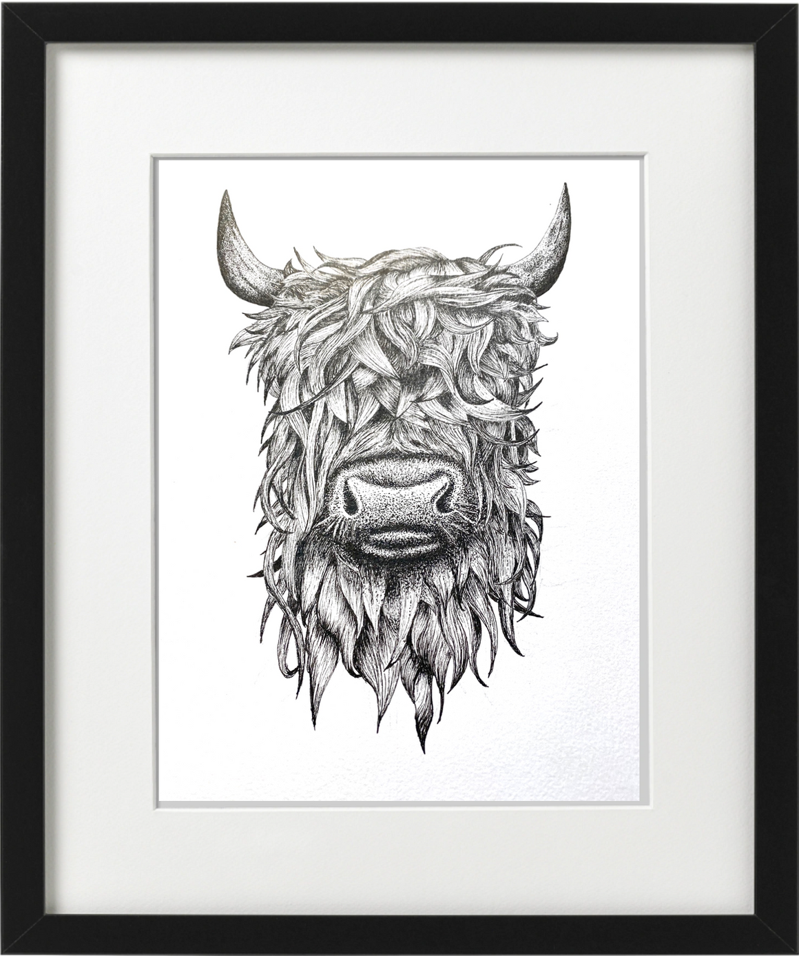 HIGHLAND COW -  PEN & INK - PRINT