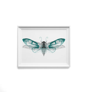 BUTTERFLY DRAGONFLY - TEAL