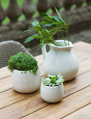 RAVELLO POT - SMALL