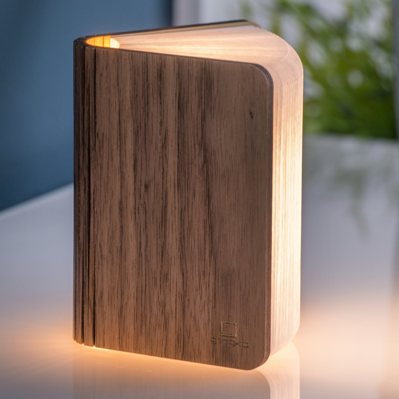 WOOD SMART BOOK LIGHT