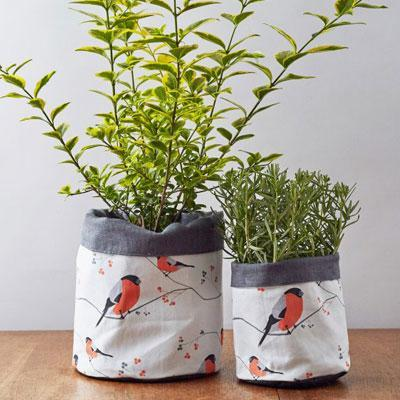 BULLFINCH PLANT POT