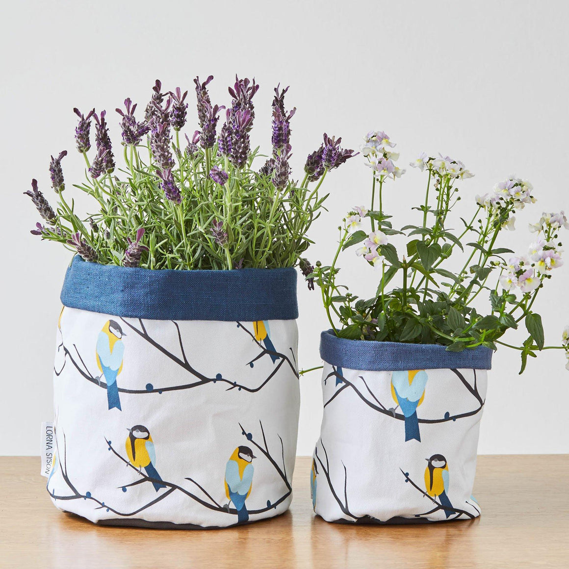 JUNEBERRY BIRD PLANT POT - BLUE TRIM