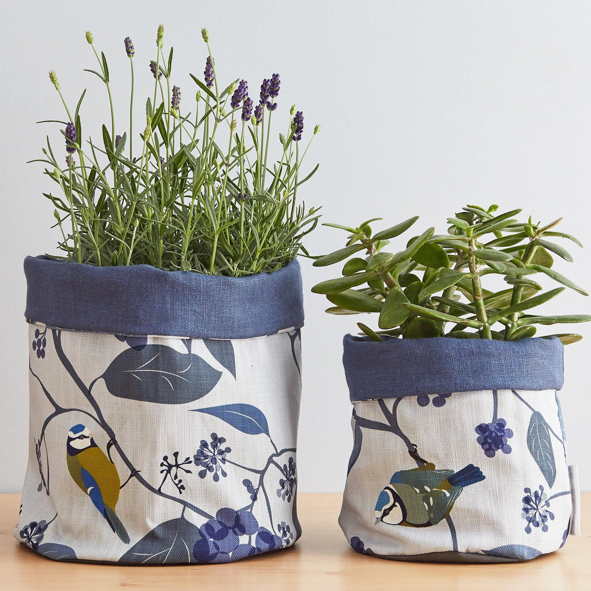 SPRING IVY BLUE PLANT POT