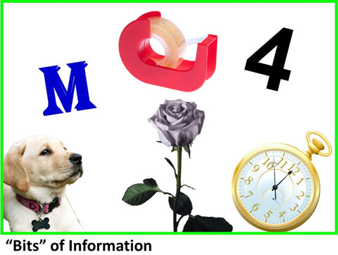 "WowzaBrain Image: ""Bits"" of Information"