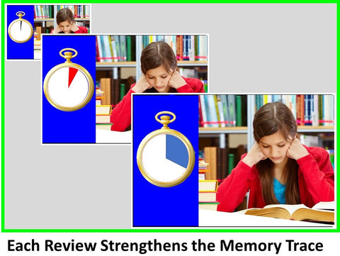 WowzaBrain: Each Review Strengthens the Memory Trace