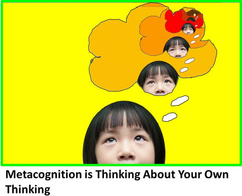 WowzaBrain Image: Metacognition is Thinking About Your Own Thinking