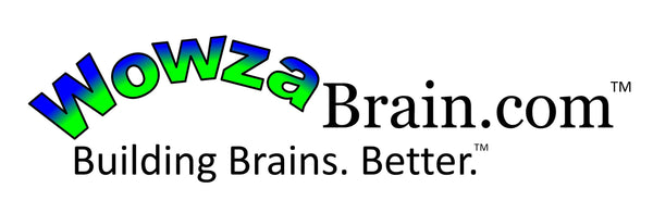 WowzaBrain logo and slogan.