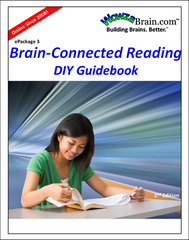 Cover of WowzaBrain's Brain-Connected Reading DIY Guidebook