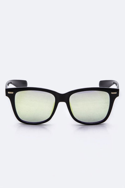 Metallic Wayferer Sunglasses