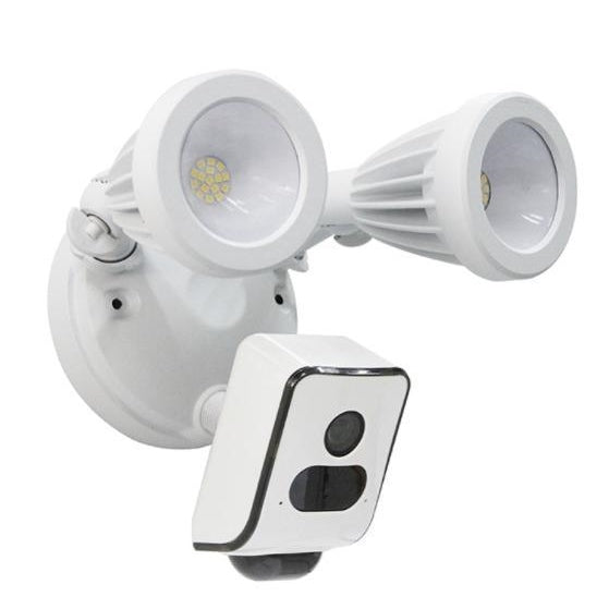 Wireless LED Floodlight Camera AL800