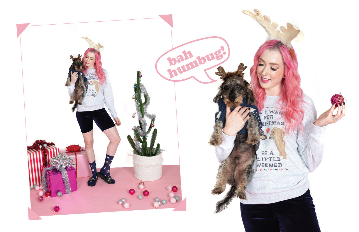 dachshund christmas shirts for christmas photoshoot