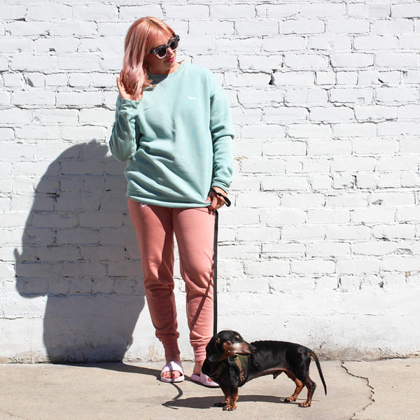 dachshund clothing, dachshund sweatshirt, dachshund apparel, gifts for dachshund lovers