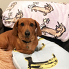 Dachshund and Unicorns Blanket | BeanGoods