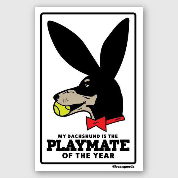 playmate of the year sticker - BeanGoods