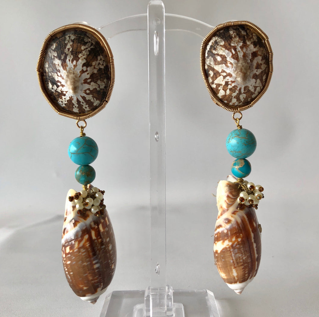 Turquoise and Brown Olive Gibbosa Earrings.