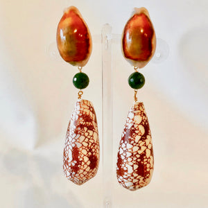 Cyprea and Exotic Conus Clip Earrings